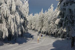 Skilanglaufzentrum Silberhütte - Loipe gelb