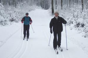 Ulrichstein 3 km