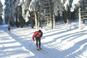 Ulrichstein 7 km