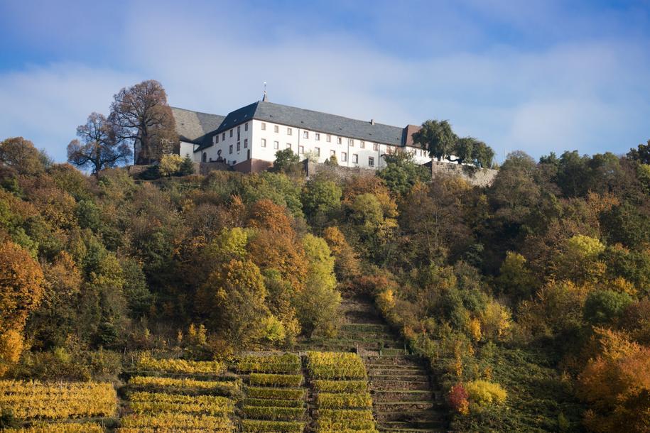 Engelberg parken kloster großheubach Franziskanerkloster Engelberg